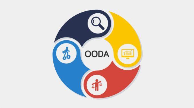 Ciclo OODA Per Il Traduttore Freelance
